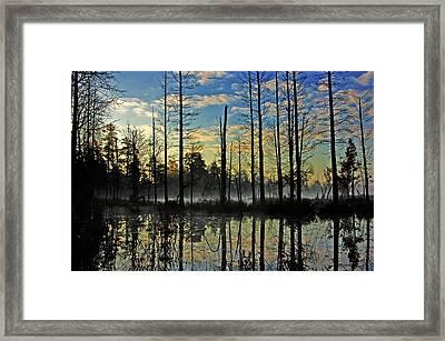 Devils Den In The Pine Barrens Framed Print
