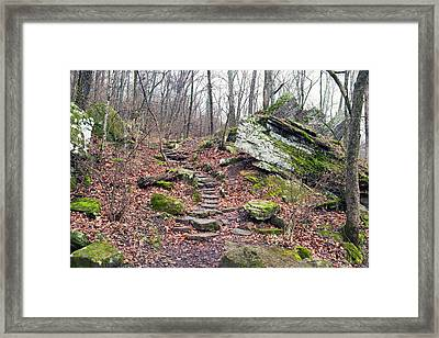 Devil's Den Stone Stairs In Autumn Framed Print by Tanya Harrison