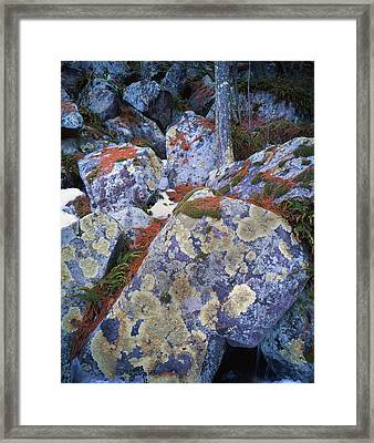 Devil's Lake Boulders Framed Print