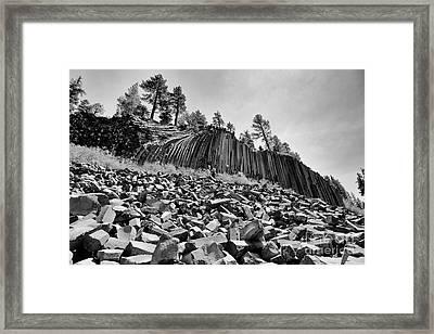 Devils Postpile National Monument Framed Print by Terry Garvin