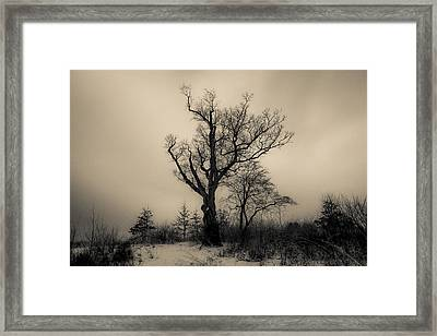 Devil's Tree Landscape Framed Print by Jeffrey Miklush