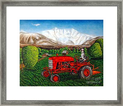 Devon Rex Cat On The Farm Framed Print by Jay  Schmetz