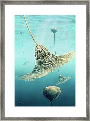 Devonian Crinoid Illustration Framed Print