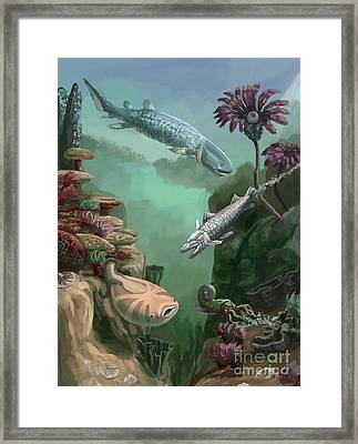 Devonian Period Framed Print by Spencer Sutton