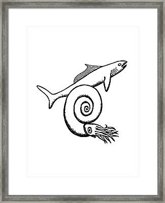 Devonian Shark And Ammonoid Framed Print by Richard Bizley