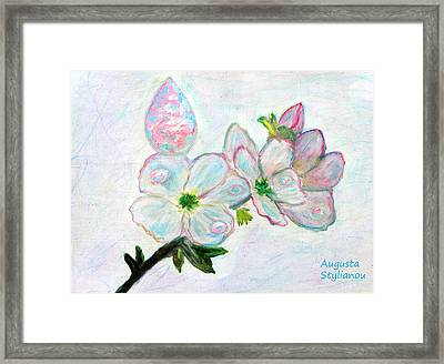 Dew And Smell Of Almond Flowers Framed Print by Augusta Stylianou