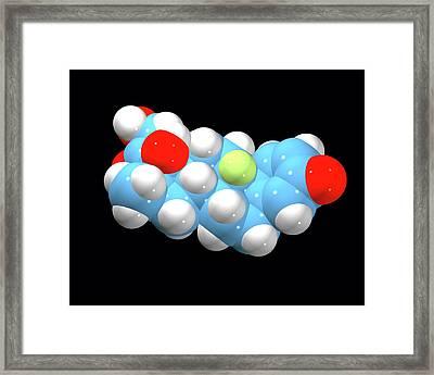 Dexamethasone Drug Molecule Framed Print by Dr Tim Evans