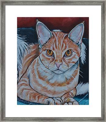Dexter Framed Print by Patti Schermerhorn