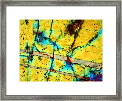 Dho 077 Eucrite 160x Framed Print by Tom Phillips