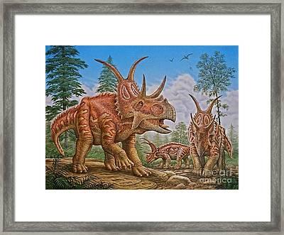 Diabloceratops Framed Print by Phil Wilson