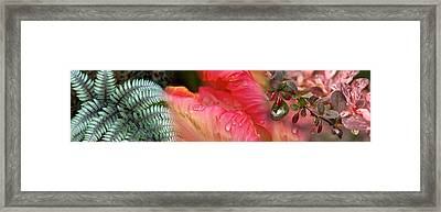 Diagonal Foliage Framed Print by Panoramic Images