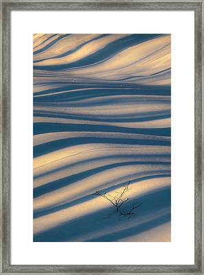 Diagonal Lines Framed Print by Rob Travis
