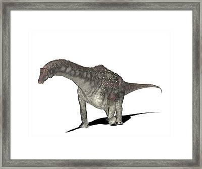 Diamantinasaurus Dinosaur Framed Print by Friedrich Saurer