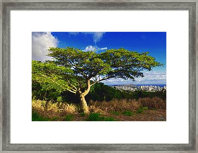 Framed Print featuring the photograph Diamond Head From Tantalus Drive by Aloha Art