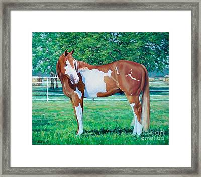 Diamond Of Riverview Ranch Framed Print by Vickie Fears