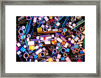 Diatom Arrangement Framed Print by Kent Wood