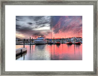 Dichotomy Framed Print