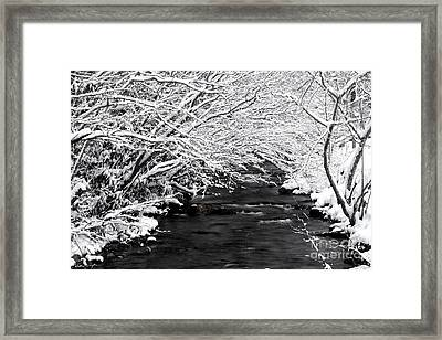 Dick's Creek Snow 2014 Framed Print