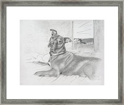 Did You Say Walk Framed Print