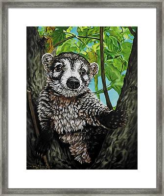 Diego Framed Print by Linda Becker