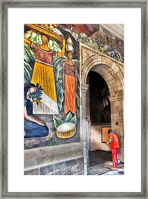 Diego's Insight Revealed Framed Print by John  Bartosik