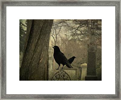 Different Diections Framed Print by Gothicrow Images
