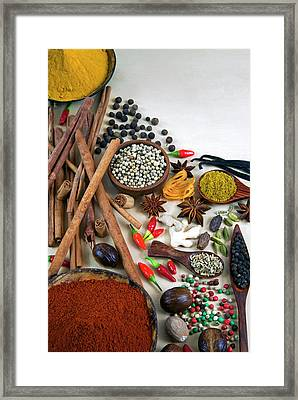 Different Types Of Spices Framed Print
