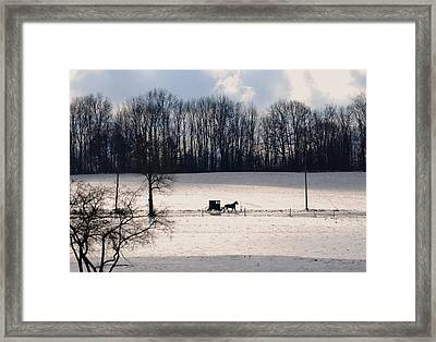 Different Way Of Life Framed Print