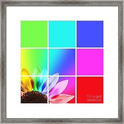 Diffraction Of Light Framed Print