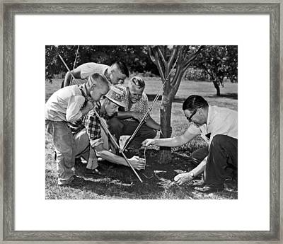 Digging Worms For Fishing Framed Print by Underwood Archives