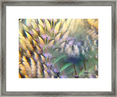 Digital Art Abstract With Swallowtail Framed Print