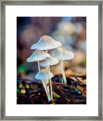 Digital Art Mushrooms Framed Print by Tammy Smith