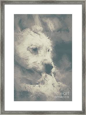Digital Oil Painting Of A Cute Scruffy Dog  Framed Print by Jorgo Photography - Wall Art Gallery