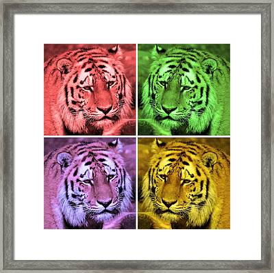 Digital Paint Of Tigers Framed Print by Tommytechno Sweden