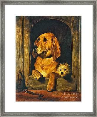 Dignity And Impudence Framed Print by Celestial Images