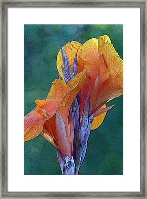 Dimensional Beauty Framed Print