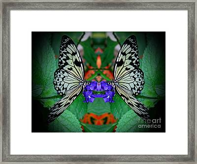 Dimensions Framed Print by Inspired Nature Photography Fine Art Photography