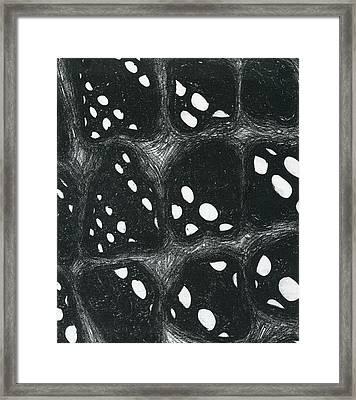 Dimensions Framed Print by Mike Rhineheart