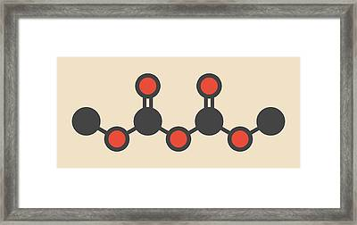 Dimethyl Dicarbonate Molecule Framed Print by Molekuul