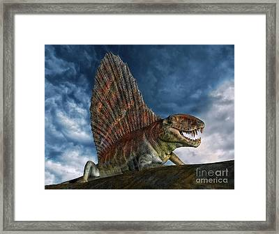 Dimetrodon Was An Extinct Genus Framed Print