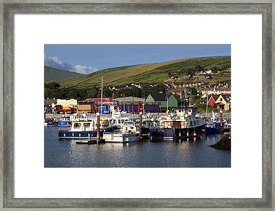Dingle Harbour County Kerry Ireland Framed Print