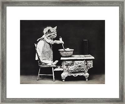 Dinner Time Framed Print by Aged Pixel