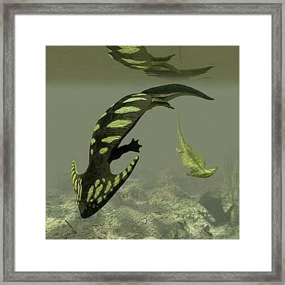 Diplocaulus Prehistoric Amphibian Framed Print by Walter Myers
