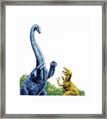 Diplodocus Defending Itself Framed Print by Deagostini/uig
