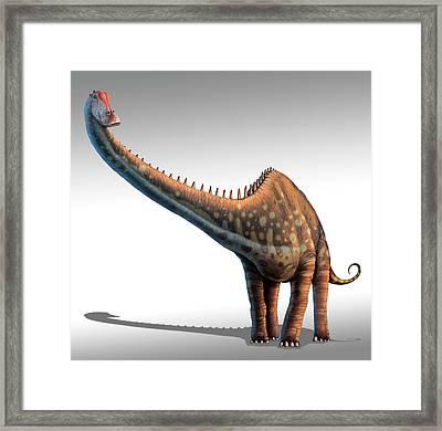 Diplodocus Dinosaur Framed Print by Mark Garlick