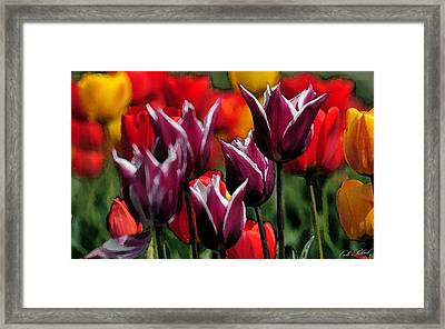 Dipped In White Framed Print by Cole Black