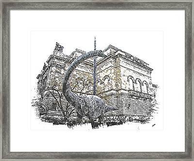 Dippy Framed Print by Spencer McKain