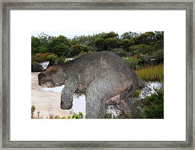 Framed Print featuring the photograph Diprotodon by Miroslava Jurcik