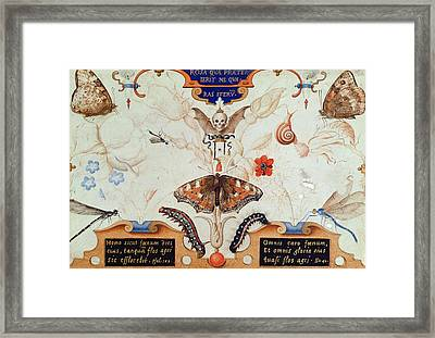 Diptych With Flowers And Insects Framed Print