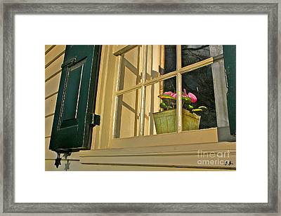 Framed Print featuring the photograph Direct Sun by Geri Glavis